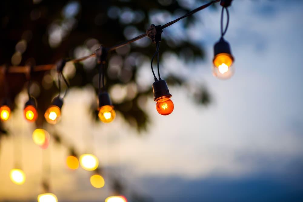 Shutterstock 368073227